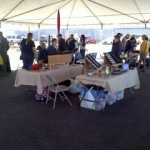 2011-Land-of-Enchantment-Fly-In (6)